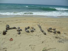 Perhaps this one done by a rather friendly crab. Unnamed beach, Vieques.